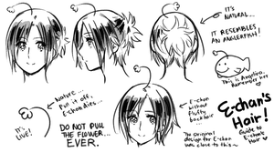 A guide to E-chan's Hair by ROSEL-D