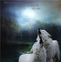 Song of the Wolf by 4EverIsntLongEnough