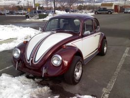 Purple Bug by KateKannibal