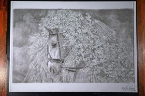 Horse-drawing by keillly