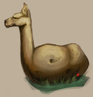 This is a Llamatato by PataYoh