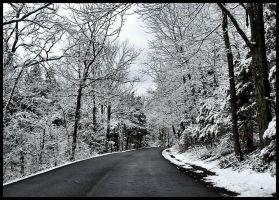 Driving in a Winter Wonderland by MistressVampy