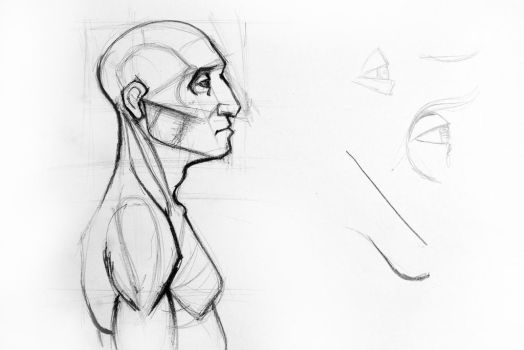 Outline drawing sketch of side profile of a human by oanaunciuleanu