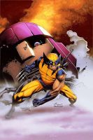 Wolverine  color by aethibert