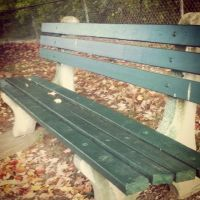 Bench by booklover1997