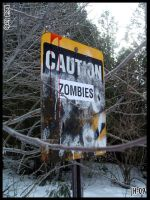 Caution Zombies by Rabid-Turtle