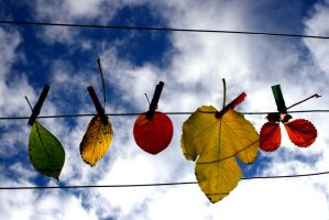 fall.. by Naynaa