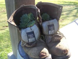 Boot Plant by KCCreations