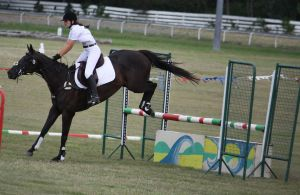 STOCK Showjumping 450 by aussiegal7