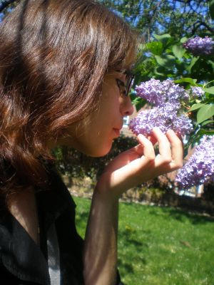 Lilacs :D by AiricaOfBordria