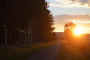 Sunset Road by Celou