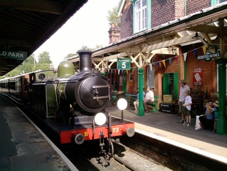 Bluebell Railway: Arrival by fallowbuck
