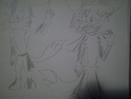 hideyoshi The Swamp wolf and Haru The Arctic wolf by RoninHunt0987