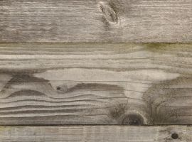 wood texture one by density-stock