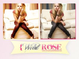 Wild Rose Action by LetsBreakDown