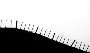 Border between black and white. by lomatic