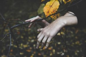 What Was Lost In The Autumn by NataliaDrepina