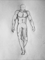 Muscle Study by McKravendrawings