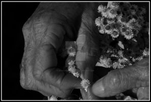 Hands Of Time by DavidLPhotography