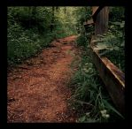 this path leads to happiness by pilas14