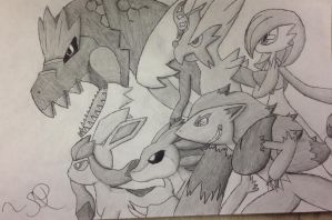PokeAmino Team Request 3 by JudgeChaos