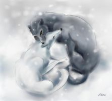 Snow Wolfs by Lin-the-Wanderer