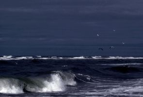 The Wave by anneclaires