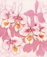 Pink Orchids by HelenParkinson