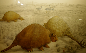 Restoration of 3 glyptodons and prehistoric birds by Lynus-the-Porcupine