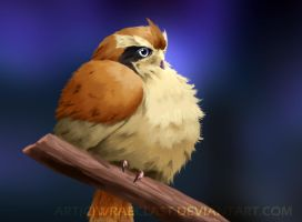 Realistic Pidgey by Wraeclast