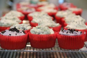 rows of cupcakes by chrissie-ness