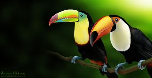 Toucans by jeroenpaint