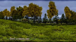 DayZ Standalone Wallpaper 2014 21 by PeriodsofLife
