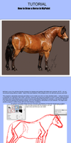 How To Draw a Horse in MyPaint by Hei-La