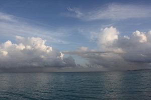 An Ocean View by EmKins-Resources