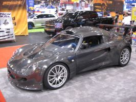 fully carbon lotus by reika7