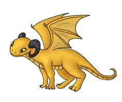 Golden Baby Dragon by Captain-Savvy