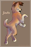 Jindoface by Not-Quite-Normal