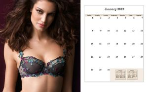 Lise Charmel 2012 Calender Zip by marquitos