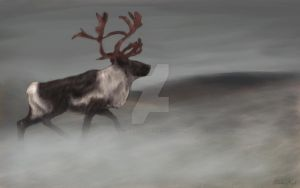 King of the wild the reindeer by shefeldio29