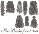 Hairbrushes cs2 by BrushHaven1