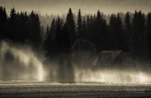 Shadows On The Mist by Nitrok