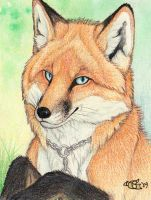 Foxxz Badge by Goldenwolf