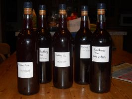 Blackberry Wine: complete by Bisected8