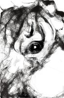Horse close up by Comix-Chick