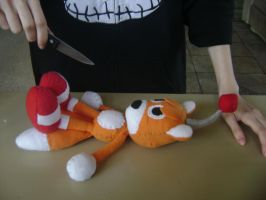 Tails Doll: Autopsy D: by SpitFireLex