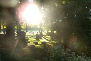 Forest Hill Cemetery 6 by GizmoJax