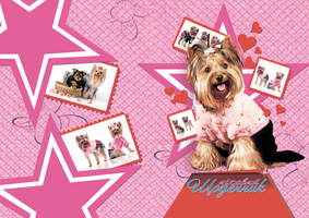 Pink diary cover with dogs by leila1605