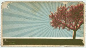 tree color- vintage by finkenauer