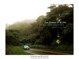 Camino a Vallarta by VADELATE